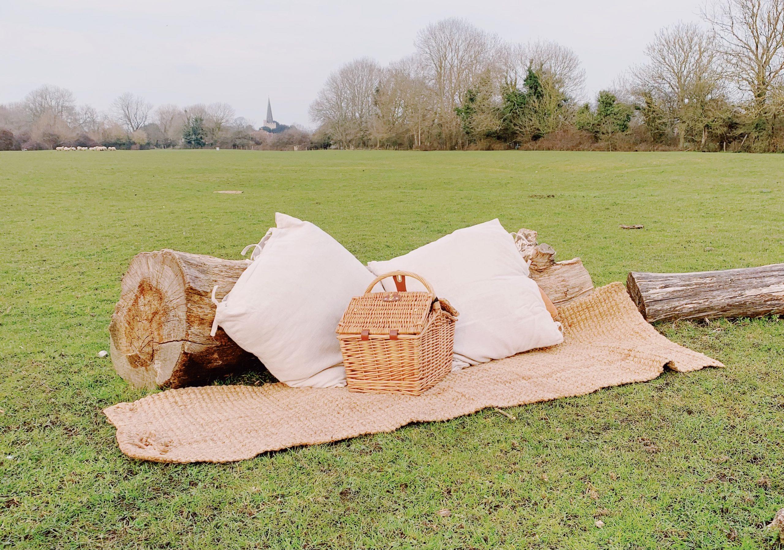 wild-picnic